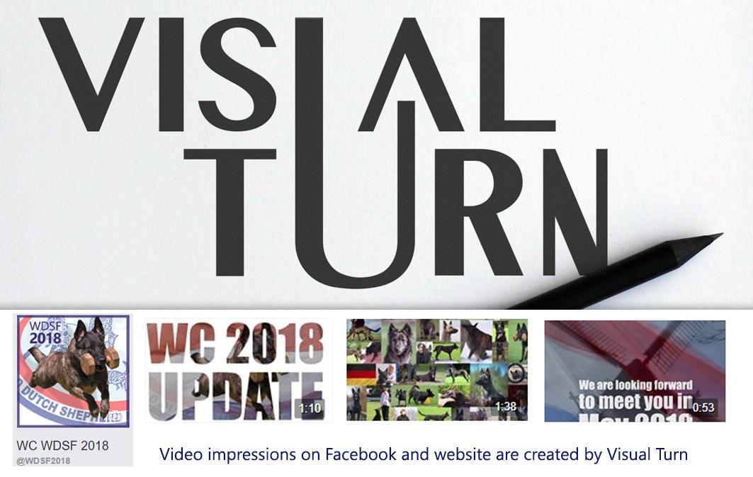 visual Turn