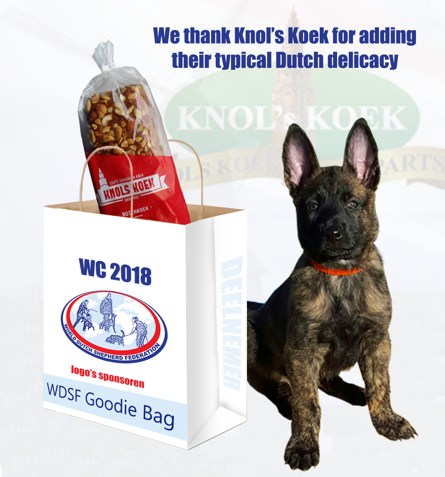goodie bag knols koek thank you