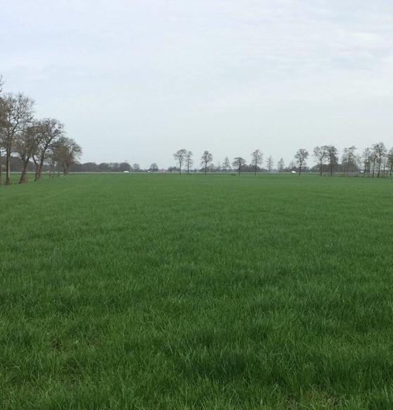 trackingfield april