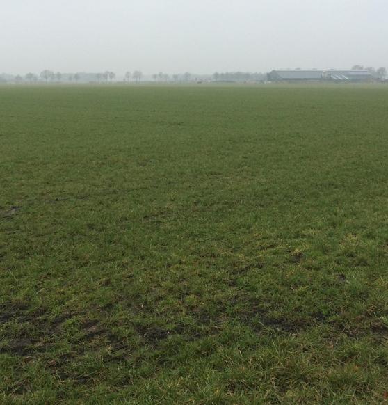 trackingfield2